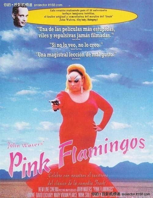 第二名——《粉红色的火烈鸟》