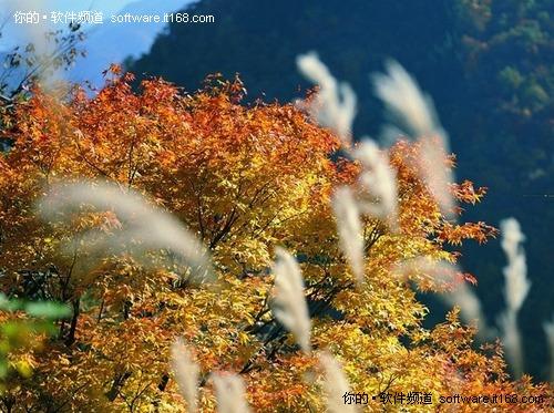 超高清晰金秋绝美风景壁纸