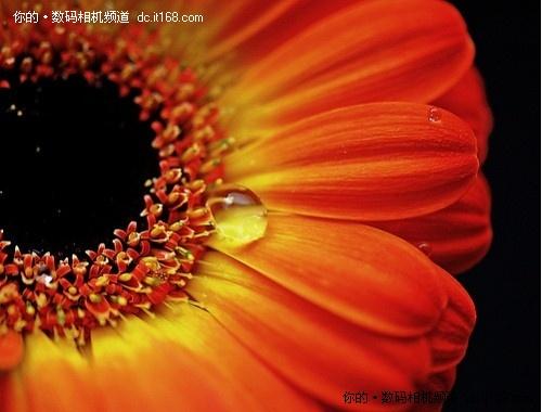 http://aeonspoke.com/hulianwang/171753.html