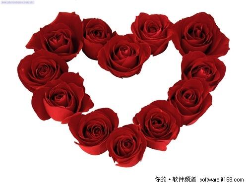情人节爱心鲜花花束高清背景图片素材