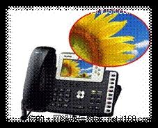 IP电话彩屏时代 领先的用户体验