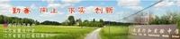 NETGEAR南京打造首个300M无线校园网络
