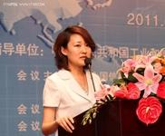 袁媛: 中国SOA标准化工作进展