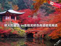 秋天的童话 30张绝美秋色高清壁纸精选