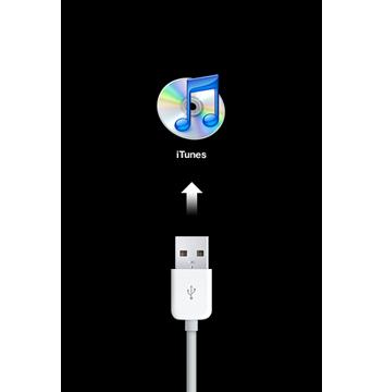 """""""连接 iTunes""""屏幕"""