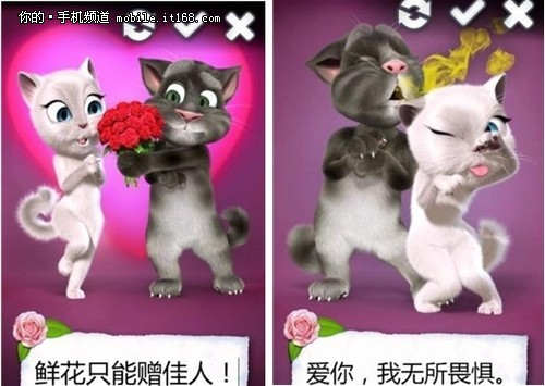 触摸屏幕上两只可爱的猫咪开始接吻,配合浓情音乐,甜蜜到爆哦!