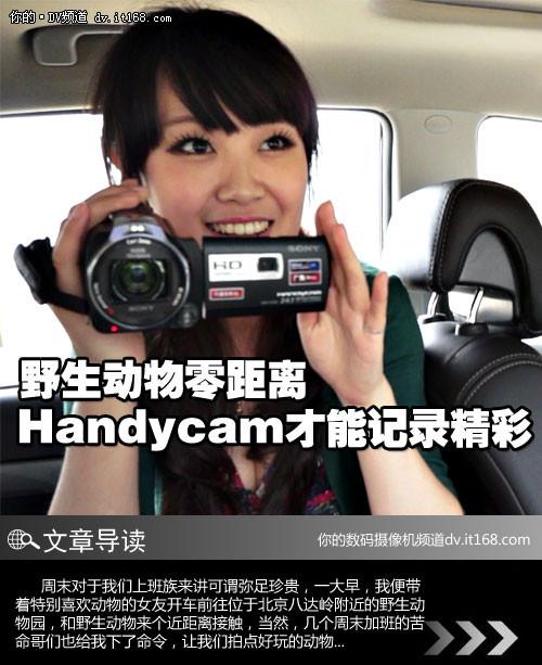 野生动物零距离 Handycam才能记录精彩
