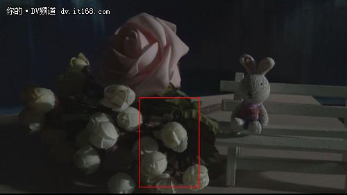 相机与DV拍视频质量对比
