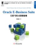 Oracle电子商务套件:功能和结构概述