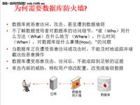 Oracle数据库防火墙技术特点
