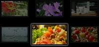 6个迷人而令人惊叹的HTML 5动画特效