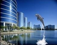 2013企业软件市场预测:MySQL地位遭挑战