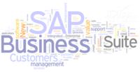 透过2013企业IT趋势 看SAP实时产品策略