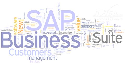 SAP全线产品打造实时企业-实时企业管理
