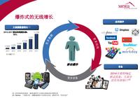 梅鲁CEO:MobileFLEX助企业克服无线挑战