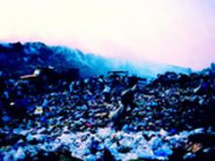 回收直面环境问题  体系服务生态链