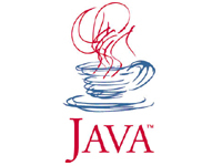 解析Java如何影响企业网络安全