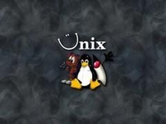 Unix在数据中心的份额与角色是什么?