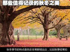 一秒钟变大师 那些值得记录的秋冬之美