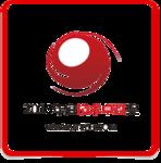 2013年度IT168技术卓越奖名单―存储篇