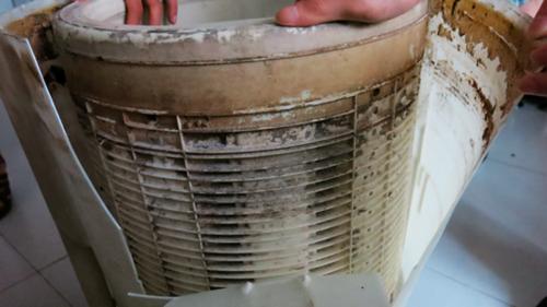 lg钢净系列洗衣机 不锈钢内桶净护健康