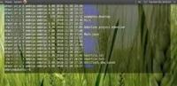 告别乏味12款最佳Linux命令行终端工具