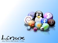 专家谈Linux选型:掌握共性 拒厂商绑架