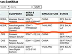 索尼E卡口全画幅新相机消息泄露?