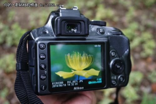 极致画质之选 尼康D3300的微观世界图片