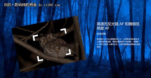 为什么选GX7 一个影像编辑的购机独白