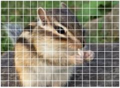 索尼发布2100万像素相位差焦对焦传感器