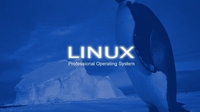 开源也疯狂:5款Linux浏览器推荐