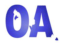 CIO开年困惑之OA选型五大法宝