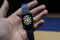 约占1/4 黑色运动版苹果表受热捧