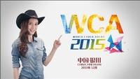 WCA 2015开赛 全民电竞风暴席卷全年