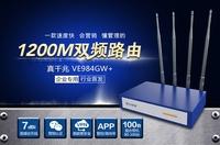 飞鱼星VE984GW+:速度快、营销、管理!