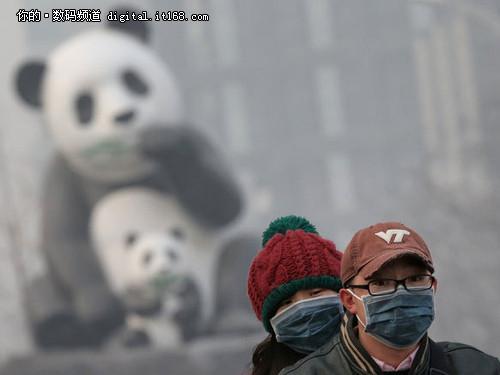 你傻其实不是你的错 PM2.5过多才是根源