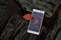 消夏解暑出行必备利器 7月多款手机推荐