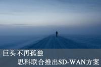 巨头不再孤独 思科联合推出SD-WAN方案