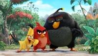 《愤怒的小鸟》大电影中文预告首次曝光