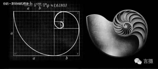 后来意大利数学家斐波那契根据黄金分割比例又研究出了著名的