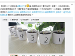 6颗豆子的悬疑营销 荣耀11.11预热开启