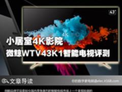 小居室4K影院 微鲸WTV43K1智能电视评测