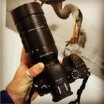 松下M43镜头100-400mm f/4-6.3将明年发