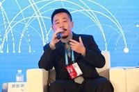 山石网科罗东平代表网络安全企业发声