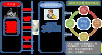 天融信从安全事件全过程谈网站安全防护