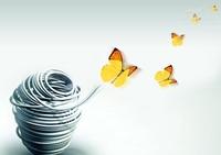 解读传统记账公司如何破茧成蝶