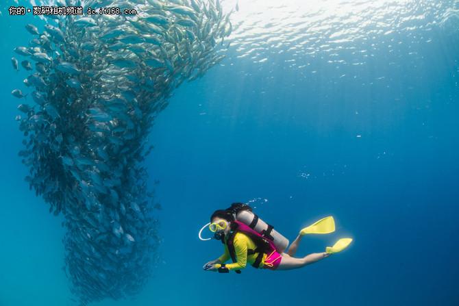 谈索尼全画幅微单A7RII壮丽水下摄影