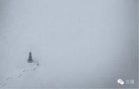 如何在雾霾天气拍出简约派艺术照