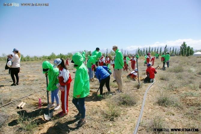 兄弟防沙五周年: 为阿拉善带去绿色希望